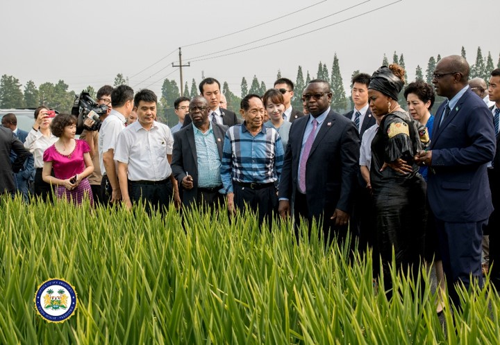 China National Hybrid Rice Research and Development Centre Hosts President Bio